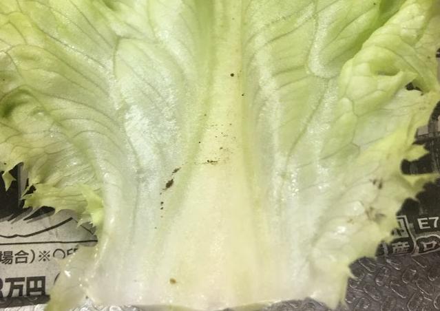 ササっとサラダの作り方